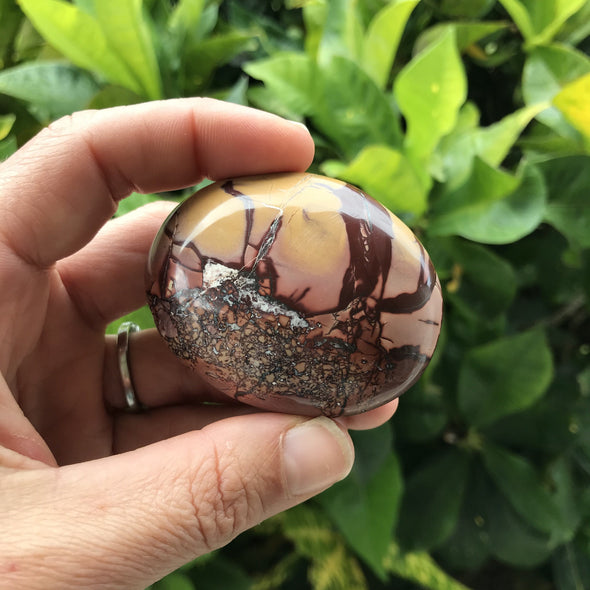 Atlas Mountain Jasper Palm Stone