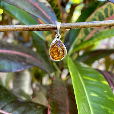 Baltic Amber Pendant- Style 13