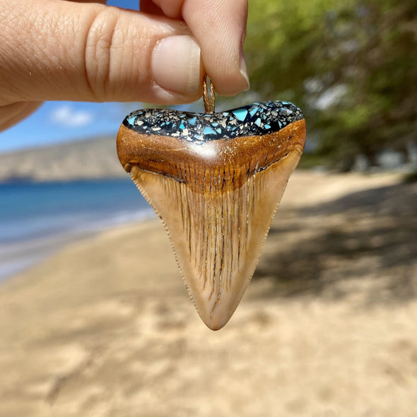 "2"" Fossil Megalodon Tooth Pendant With Turquoise and Pyrite Inlay - STFP15"