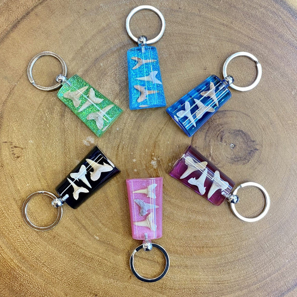 Fossil Shark Tooth Colorful Rectangular Keychain