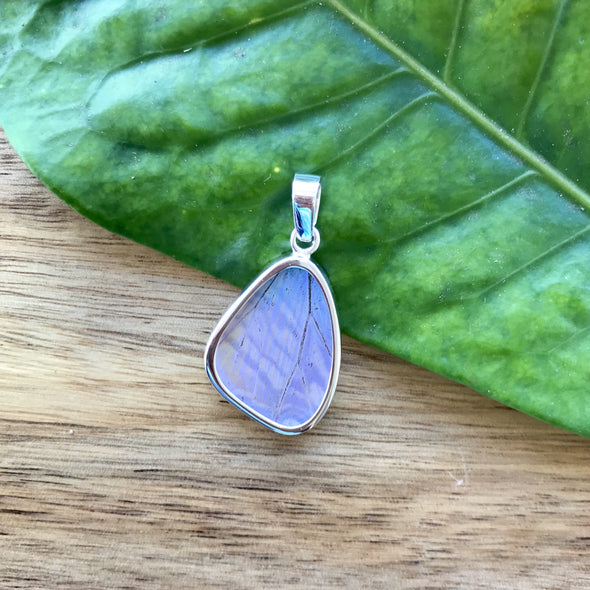 Small Butterfly Wing Pendant