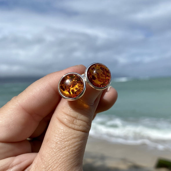 Large Baltic Amber Button Post Earrings- BAER32