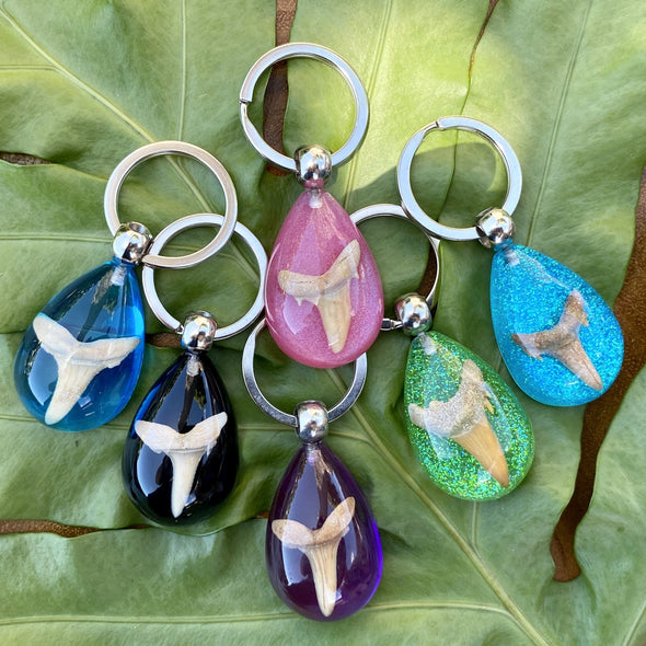 Fossil Shark Tooth Colorful Teardrop Keychain