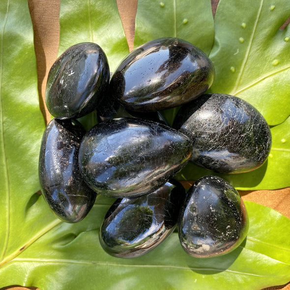 Black Tourmaline Polished Pebbles