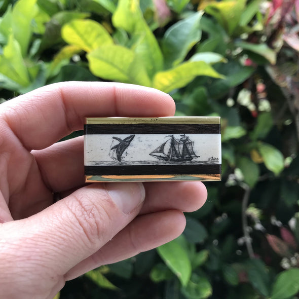 Scrimshaw on Bone Brass Money Clip