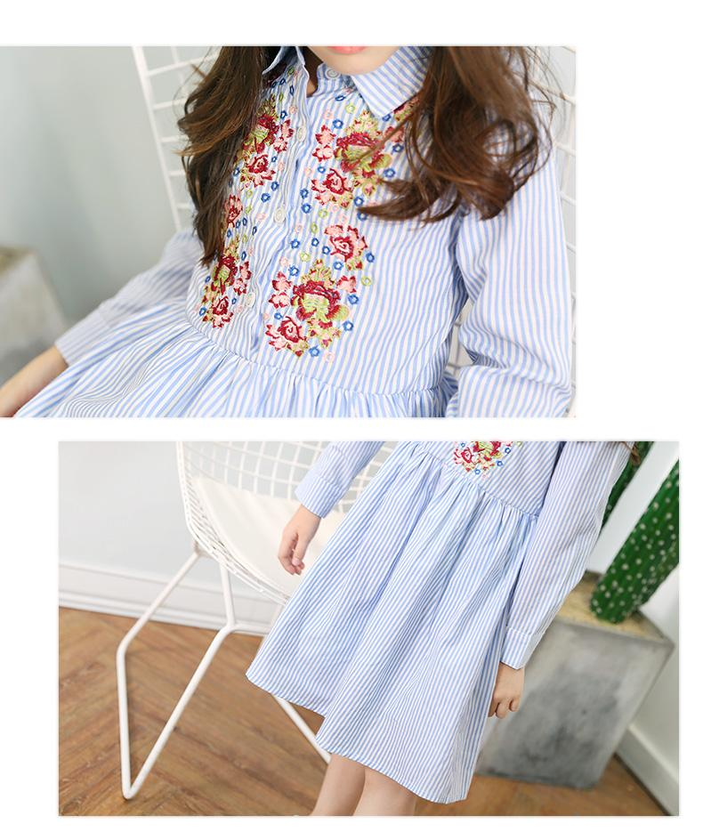 Beautiful Embroidered Long Sleeve Striped Dress  in Strawbie Collections - girls dress