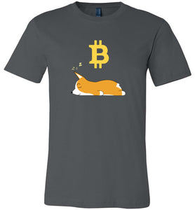 Bitcoin Dreams - Canvas T-Shirt
