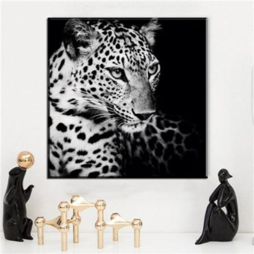 Leopard Black & White