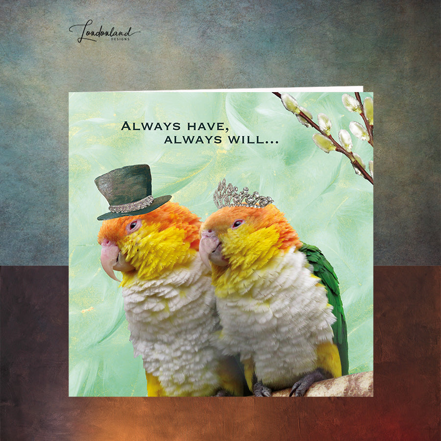 Always Have Always Will, Quirky Budgie Birds Greeting Card