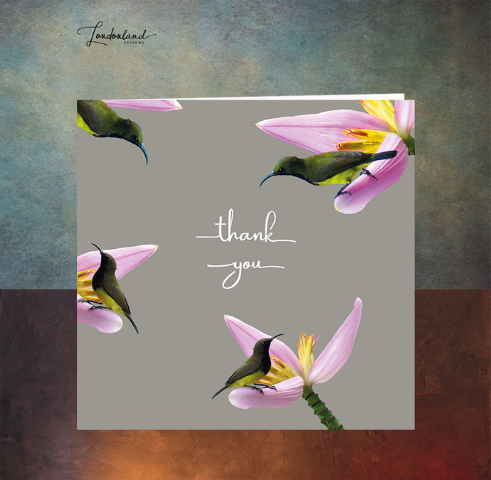 Hummingbird Thanks Thank You Card