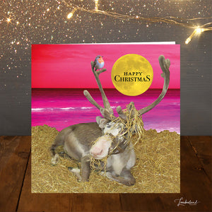 Rudolph In Australia Christmas Card