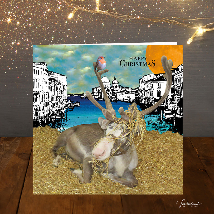 Rudolph in Venice Christmas Card