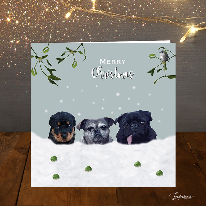 Snow Dogs Christmas Card