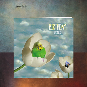 Tulip Nest Birthday Card