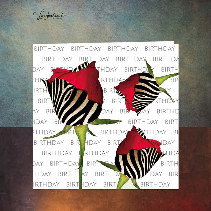 Zebra Roses Birthday Card