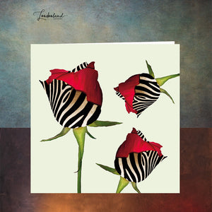 Zebra Roses Greeting Card