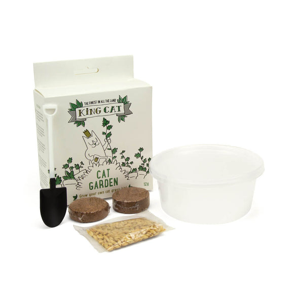 King Cat - Grow Your Own Cat Grass Kit