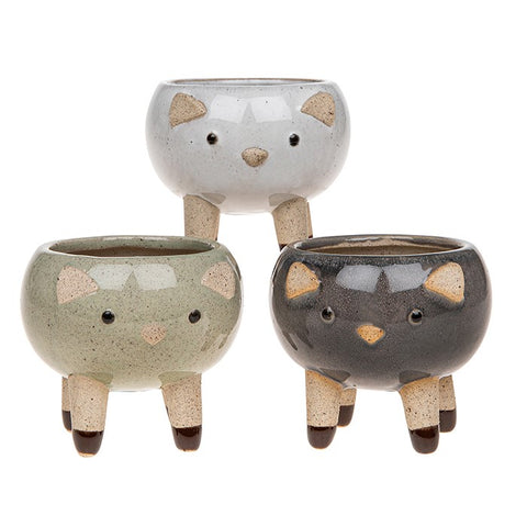 Cat Pot Pals - Mini Glazed Plant Pot Holder (Single)