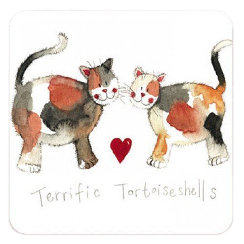 Alex Clark Fridge Magnet - Terrific Tortoiseshells