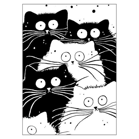 Kim Haskins Mog Rule Cat Greetings Card