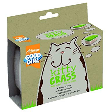 Armitage Good Girl Kitty Cat Grass