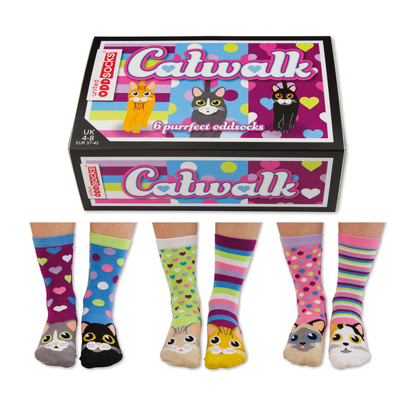 Box of 6 Oddsocks - Fun & Colourful Designs (3 Options)