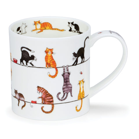Dunoon Fine Bone China Cat Live Wires Mug in Gift Box