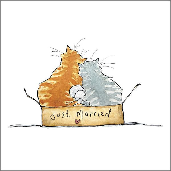 Holly Surplice Cat Greetings Card - Just Married