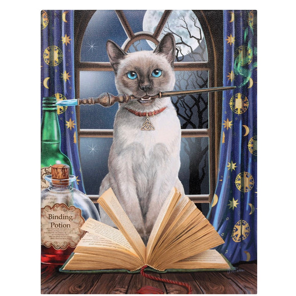 Lisa Parker Hocus Pocus Canvas Cat Plaque