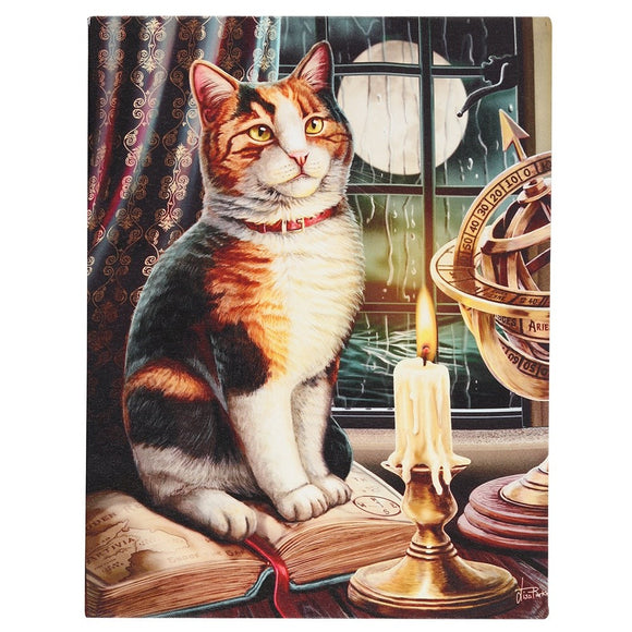 Lisa Parker Adventure Awaits Canvas Cat Plaque