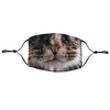 Photographic Cat Face Reusable Face Covering