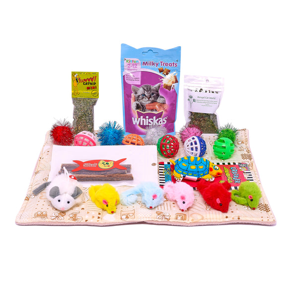Premium Kitten Gift Box with Mystery FREE GIFT!