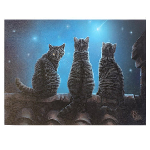 Lisa Parker Wish Upon a Star Canvas Cat Plaque