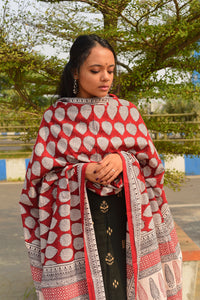 Kaisori Noor collection - Bagh block printed dupatta - Kaisori
