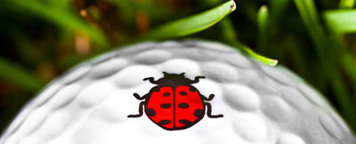 Golfdotz Ladybug. The perfect way to mark your golf ball.