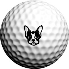 Boston Terrier - Golfdotz