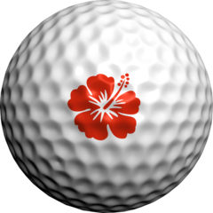 Hawaiian Hibiscus Red - Golfdotz