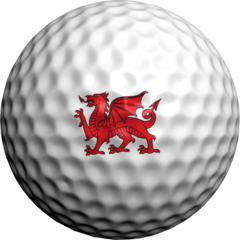 Welsh Flag - Golfdotz