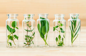 How to Choose the Right Herbal Preparation