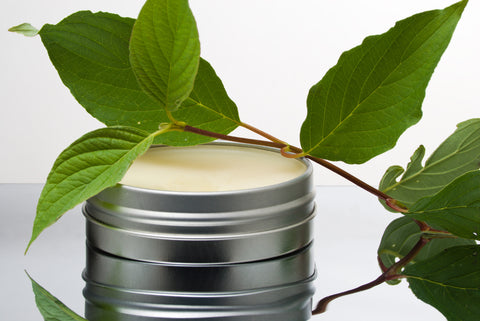 WWH Salve in tin with leaf/branch laid on top
