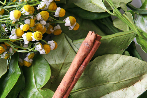 Cinnamon stick laying on top of other herbs