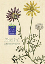 Botanical Posters