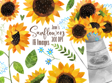 Sunflowers Graphics Set