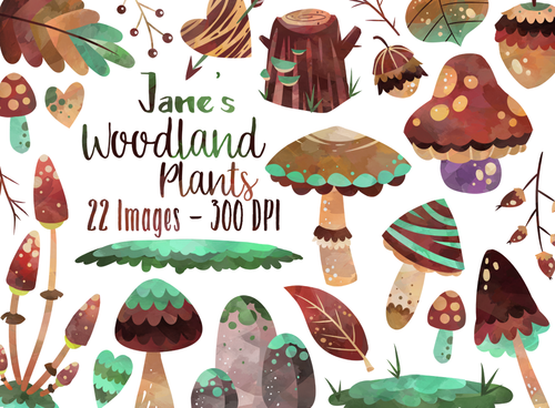 Woodland Plants Graphics Set