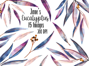 Eucalyptus Graphics Set