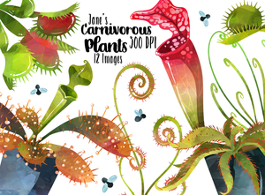 Carnivorous Plants Graphics Set