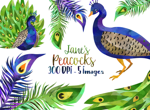 Peacock Graphics Set