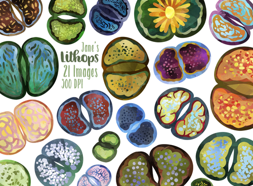 Lithops Graphics Set