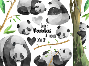 Panda Graphics Set
