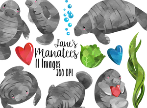 Manatee Graphics Set